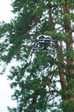 Drone flies in forest.Selective focus stock photo