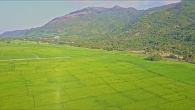 Drone Flies from Mountains Over Green Rice Fields against Sky. Drone flies from forestry mountains over across green rice fields seperated to plots against sky stock footage