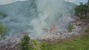 Drone flies over burning land plot moves down to tropical plants. Drone flies over burning land plot near road and moves down to tropical plants among green stock video footage
