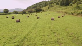 A drone flying over a field with green grass and dry twisted hay on a summer day. stock video footage