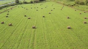 A drone flying over a field with green grass and dry twisted hay on a summer day. stock footage