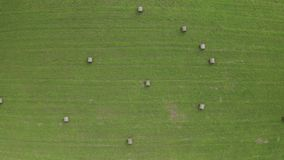 A drone flying over a field with green grass and dry twisted hay on a summer day. stock video