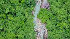 Drone flies over river between thick tropical jungle stock video