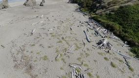 Drone footage over sand beach with driftwood stock video footage