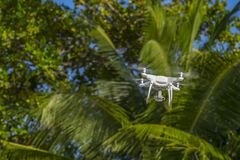 Drone in flight, green trees in the background, selective focus on the drone stock images
