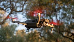 Drone in flight. Little drone hovering in between the trees on sunny day royalty free stock photo