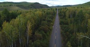 drone flight over trail in autumn forest stock footage