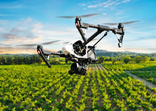 Drone flying above beautiful landscape. With vineyards royalty free stock photography