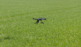 Drone flying above field. Stock Images