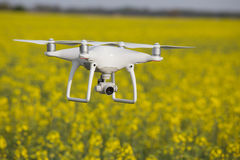 Drone flying above rapeseed ield Stock Photo