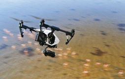 Free Drone Flying Above Swamps With Birds Stock Photo - 79269580