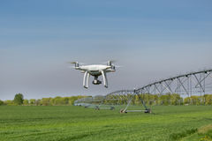 Drone flying above wheat field Stock Image