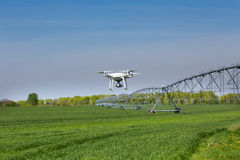 Drone flying above wheat field. Drone flying above green wheat field with irrigation system in background royalty free stock photography