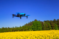 Drone flying over the field. Drone flying over blossom rapeseed field Royalty Free Stock Photography