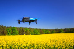 Drone flying over the field. Drone flying over blossom rapeseed field Stock Images