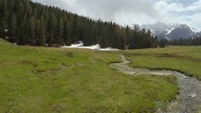 Drone flying over green valley with rivulet, view on Dolomites, cool landscape. Stock footage stock footage