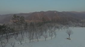 Drone flying over a snow covered field in a public park. Surrounded by trees on a hazy morning with mountains and hills in the distance and a Korean flag waving stock video footage
