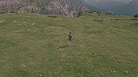 Drone flying over a woman who walks on the field in Tre Cime di Lavaredo. stock video