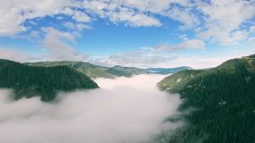 Drone flying up over amazing valley covered with forest and filled with fog stock video