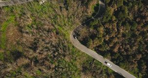 Drone follows car driving along mountain road. Aerial view of a narrow forest driveway. Logistics and transportation. 4K. Traveling and tourism adventures stock video