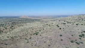 Drone footage following wild game in the kalahari desert stock footage