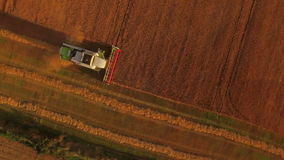 Drone footage of golden fields and combine harvester stock footage