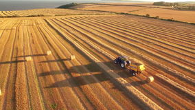 Drone footage of golden fields and combine harvester stock video footage