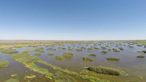 Drone Footage Over Water And Grass Wetlands California stock video