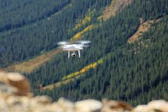 A white drone flying above a pine tree forest stock photography