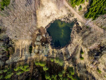 Drone image. aerial view of rural area with forest lake. In bright sunlight stock image