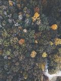 Drone image of a multicolored forest in the Southeastern United States with fall foliage. This was shot in rural Alabama with rolling hills stock image