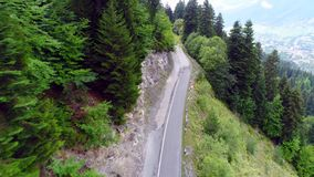 Drone 4k shoting of the road among pine forest. Drone 4k shoting of the asphalt road among green trees in forest. Top down view on the road in pine forest in stock footage