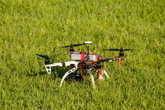 Drone in the meadow Royalty Free Stock Photo