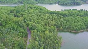 Drone Moves along Road among Forest Plantations by Lake stock video footage