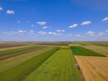 Drone photo quad in a field in summer in agricultural season Royalty Free Stock Images