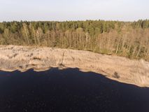 Drone photography- beautiful view with coast of lake in Latvia. royalty free stock photography