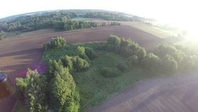 Drone rotating in sky over autumn sowed farmland fields and trees, aerial view stock footage