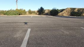Drone Shadow. Drone flying low in a parking lot while capturing it`s shadow stock video footage