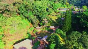 Drone Shot of Hmong Doi Pui Hill Tribe Flower Garden, Chiang Mai, Northern Thailand 01
