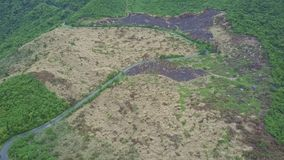 Drone Shows Highland Territories Green and Burnt Forests. Drone shows different Vietnamese highland territories boundless green tropical forests and burnt plots stock video footage