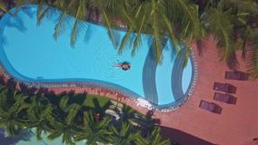 Drone shows nice hotel pool through palms stock footage
