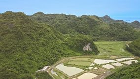 Drone Shows Wide Rice Fields among Large Mountains. Drone shows wide rice fields covered with water among large mountains and jungle against blue sky stock video