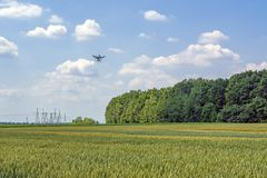 Drone on a sunny day against the sky and clouds over the wheat field royalty free stock photo