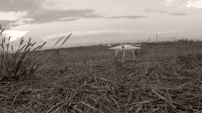 Drone taking off. Drone takes off from the field, black and white footage stock video footage