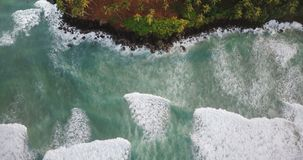 Drone top view lockdown shot of beautiful foaming ocean waves reaching picturesque exotic shore with tropical trees. Aerial static shot of beautiful white stock footage