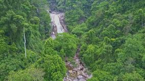 Drone View Cascade Runs into River Hides behind Jungle Trees stock video footage