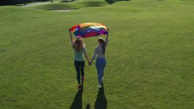 Drone view of gay couple walking with rainbow flag. Aerial shot of lesbian couple walking hand in hand across green lawn holding color lgbt flag fluttering high stock footage