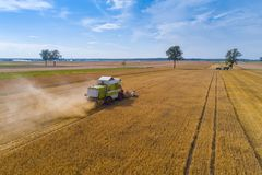Drone view of harvester combine working on field. Stock Images