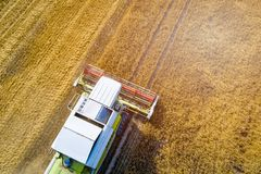 Drone view of harvester combine working on field. Stock Photos
