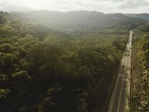 Drone shot of high way in the forest royalty free stock photography